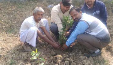 डॉ प्रियंक कुमार ने बनाया मसाला बगीचा Soni News