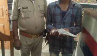 कोंच में तमंचा कारतूस के साथ एक गिरफ्तार। Soni News